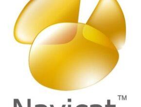 Navicat Premium 15.0.20 With Crack [Latest 2021] Free Download