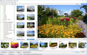 PicturesToExe Deluxe 10.0.11 Crack + Keygen [ Latest 2021] Free Download